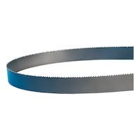 LENOX Bi-Metall Sägeband Rx+ 54 x 1,27 mm 4/6 EHS