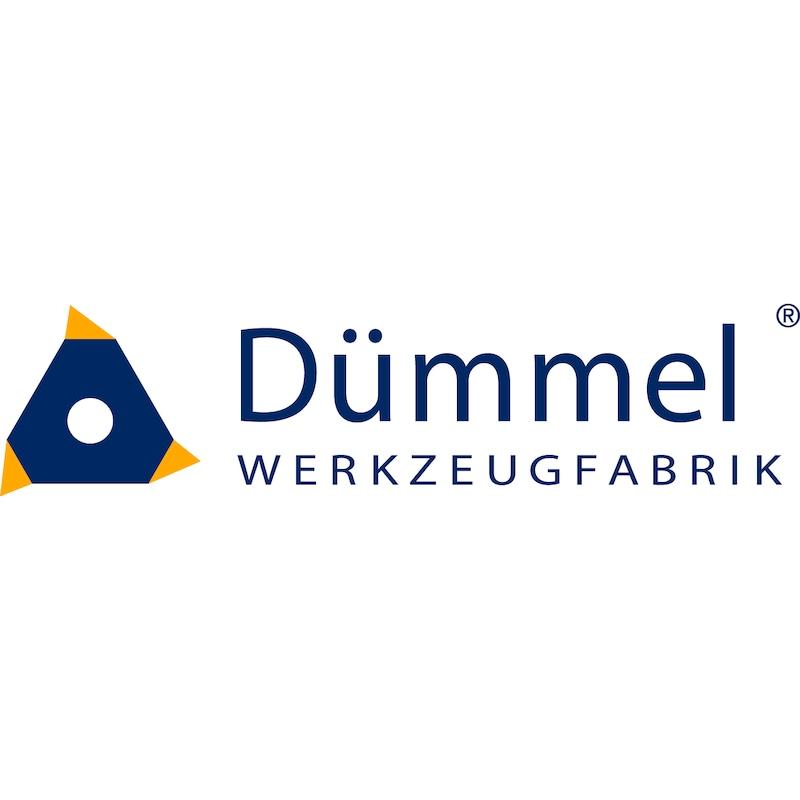 DED.1002.30/K10F DÜMMEL, Einstechwendeplatte K10 - Stechdreh-Werkzeuge Schneideinsatz