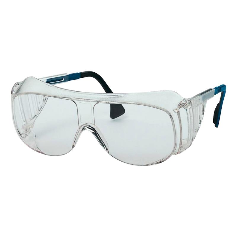 Bügelschutzbrille |OUTLET