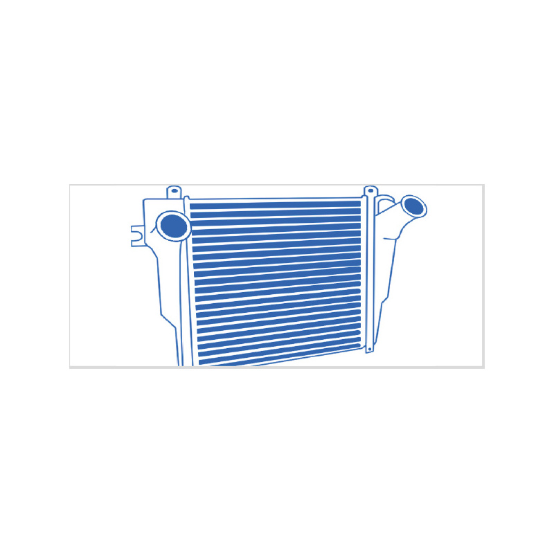 641 Ladeluftkühler Reiniger - CARGO logic® 641