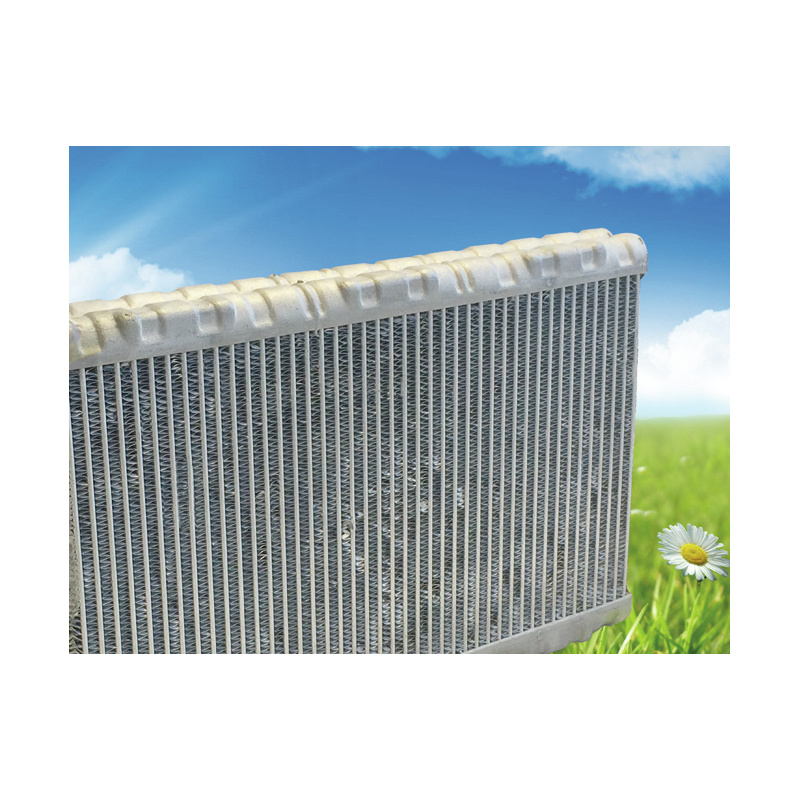 990 Desinfektion Klimaanlage - Contra Sept® 990