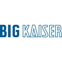 973.355 BIG KAISER, Spannzangenhalter C6-MEGA6E-90
